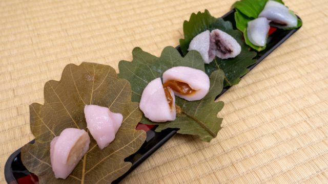 京都 柏餅